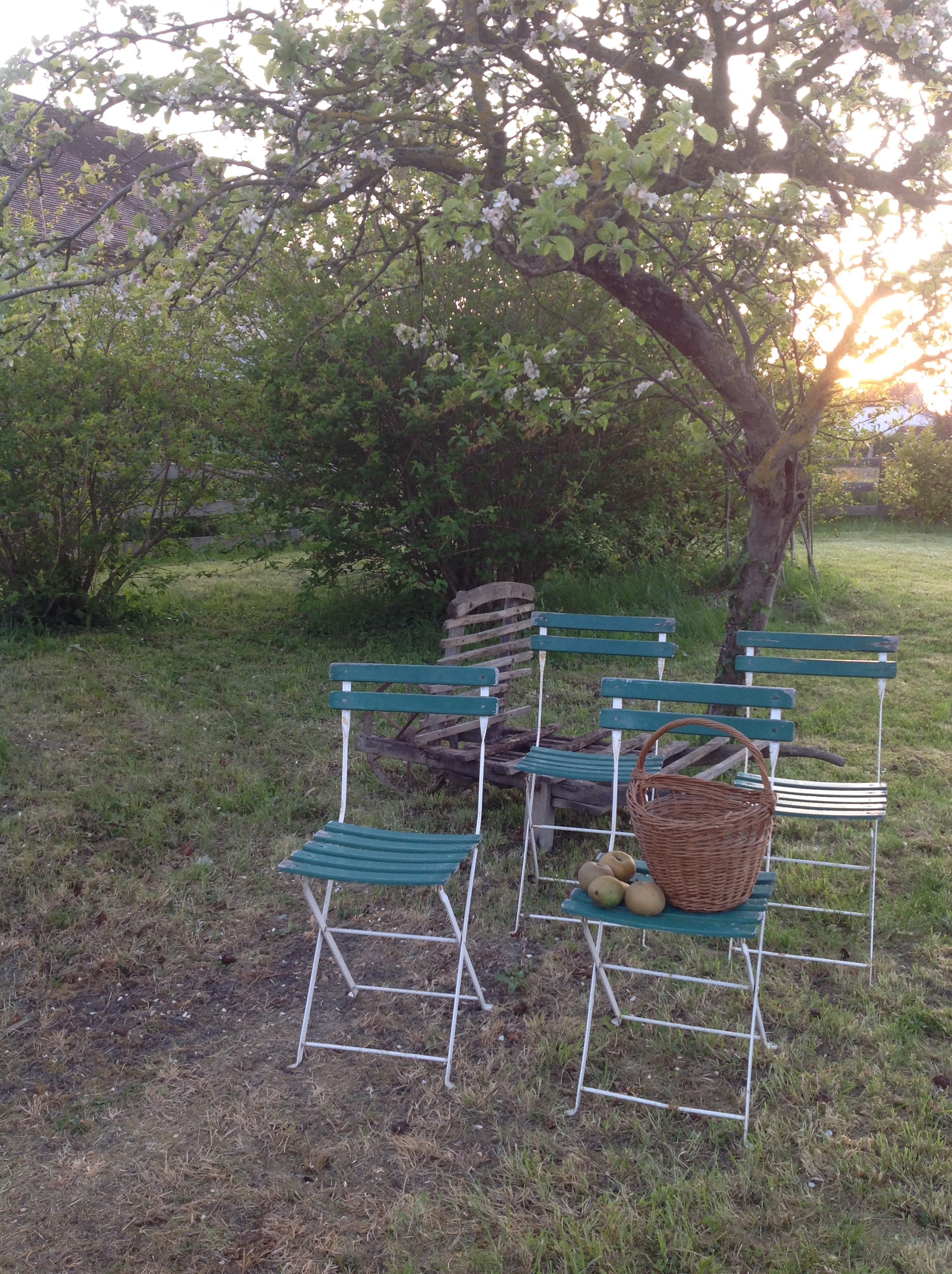 French Classic Garden Chairs 3 Remaining Antiquites Francaises